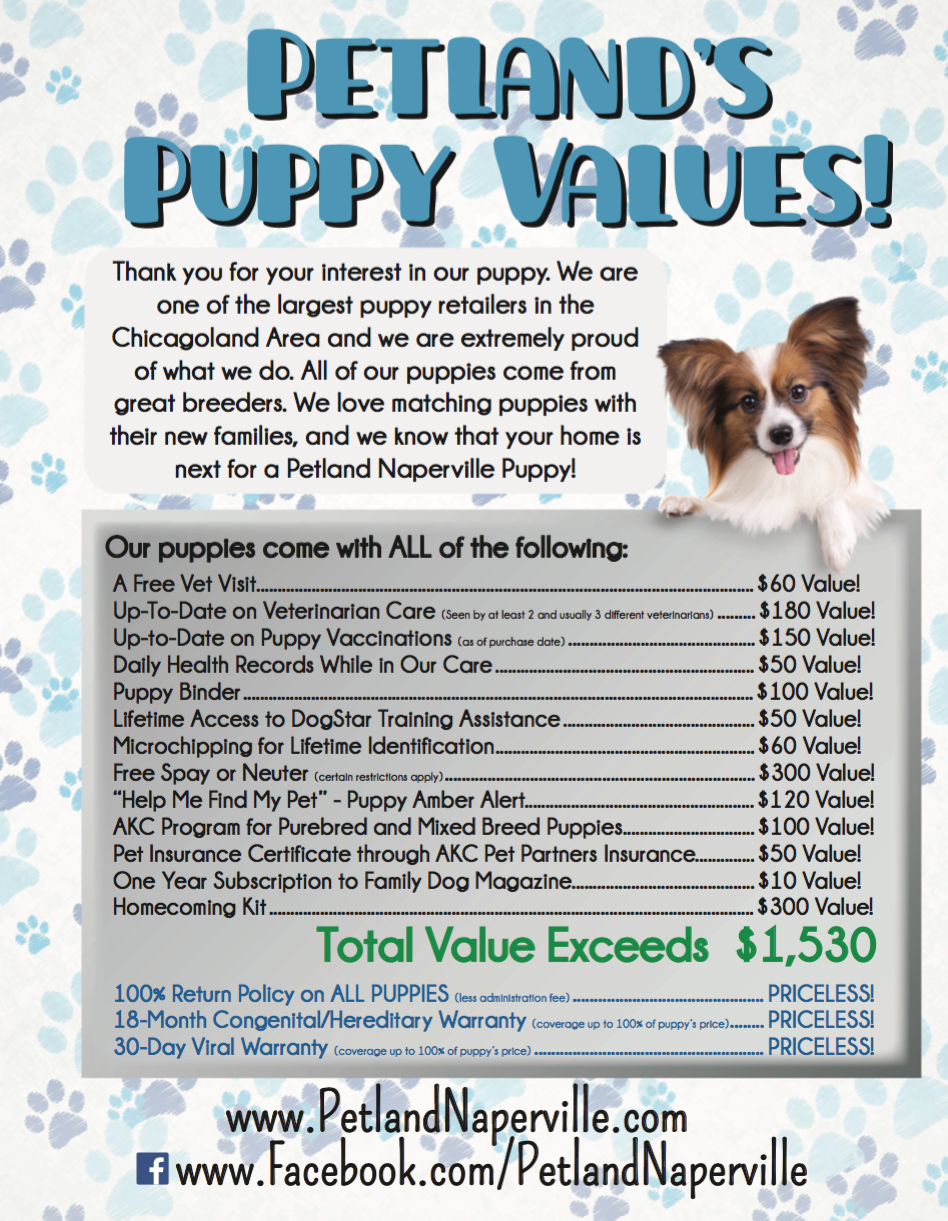petland puppy values naperville