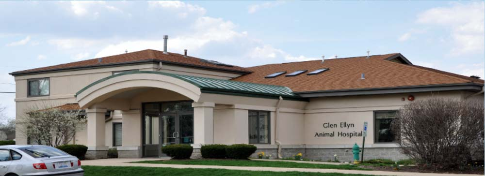 Garden Street Animal Hospital