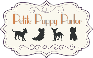 Petite Puppies Available
