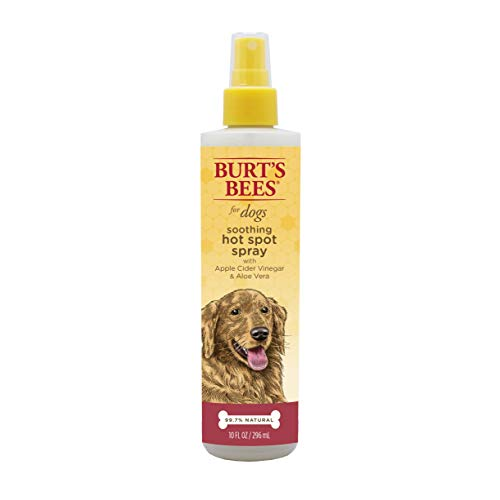 BURT'S BEES ITCH/HOT SPOT SPRAY