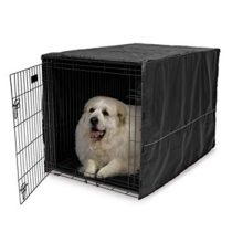 CAYMAN 2 PET CARRIER ASST.