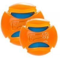 CHUCKIT HYDRO SQUEEZE BALL L