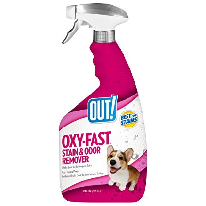 GOOD DOG STAIN & ODOR 32 OZ